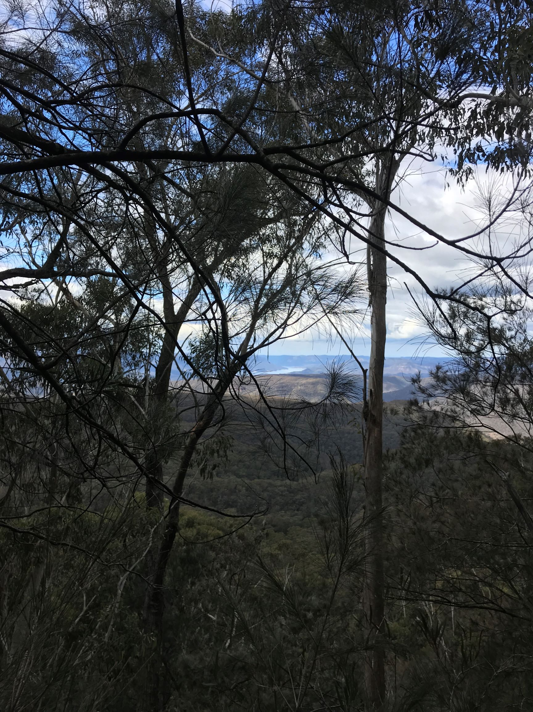 Easterly view from the handline back over Lake Burragorang